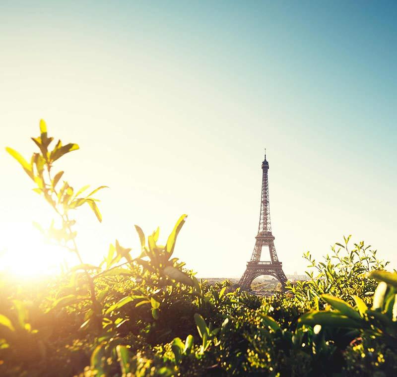 Blick auf den Eiffelturm bei Sonnenaufgang
