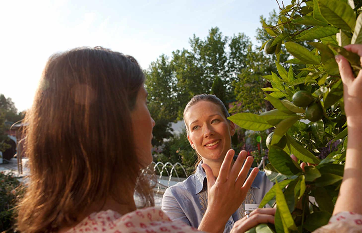 Zwei Frauen vor Olivenbaum