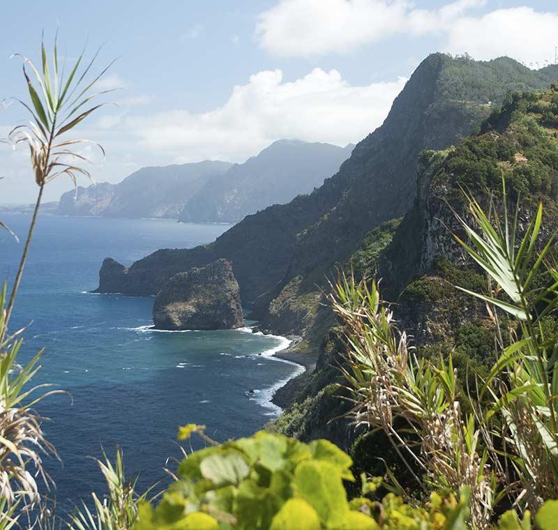 Ausblick auf die Bucht von Madeira