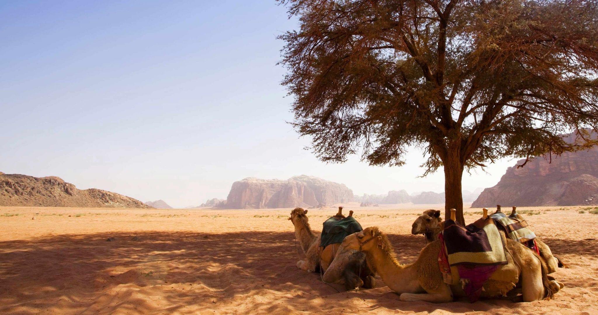 Atemberaubende Schätze Jordaniens