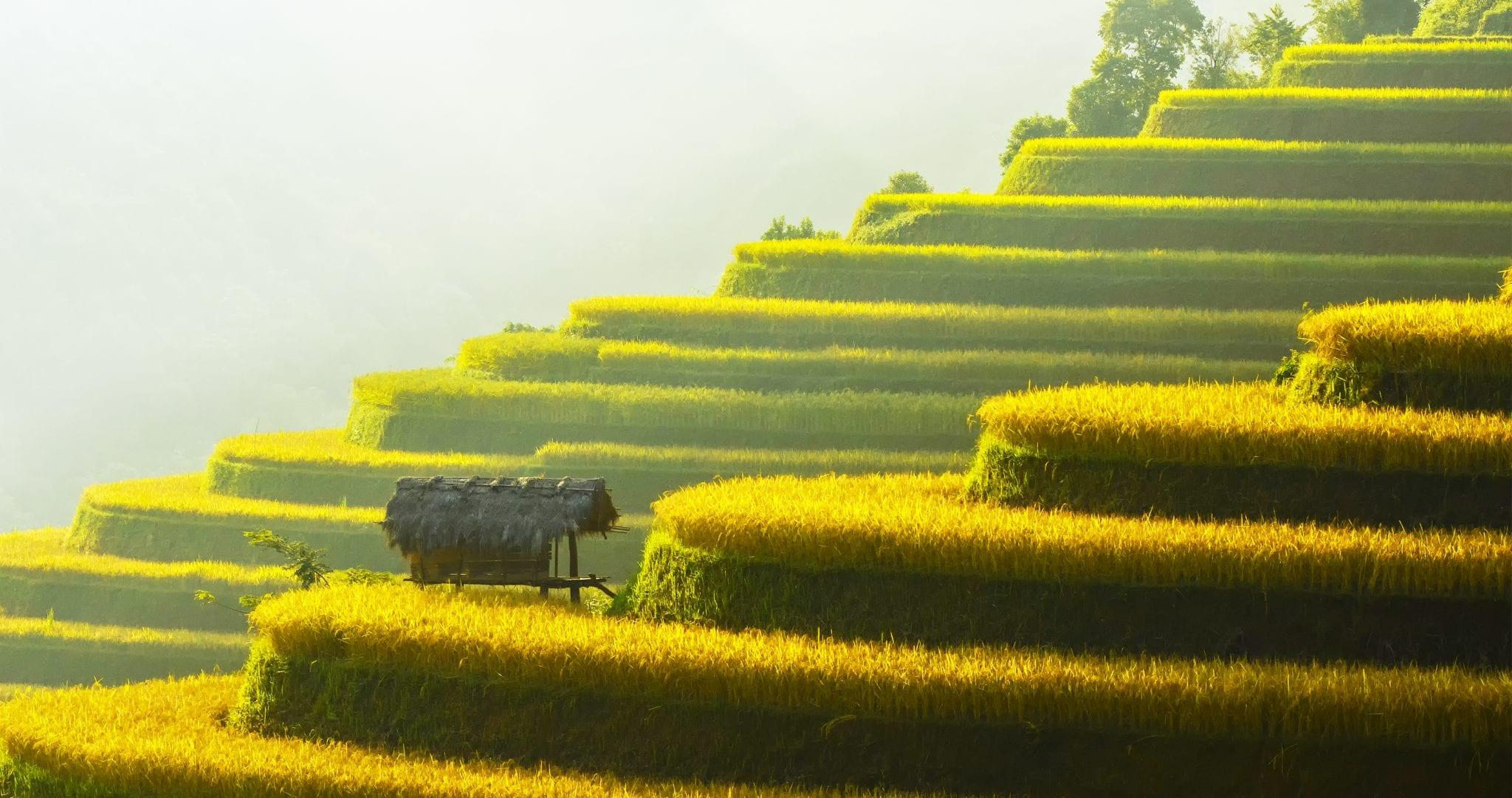 Indochina - Am Ufer des Mekong
