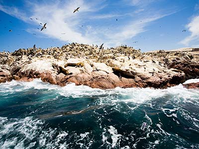 Rundreise Peru Ballestas Inseln