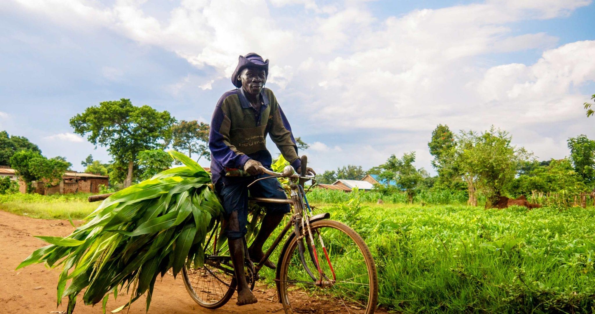 Uganda – die Perle Afrikas
