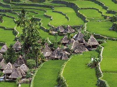 Philippinen Reisterrassen