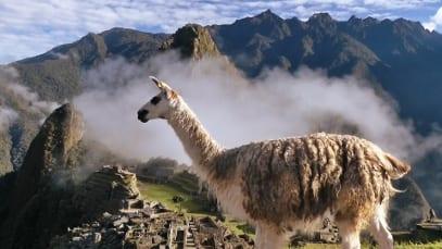 Gebeco Peru Angebot