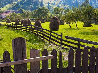 Rundreise Rumänien Karpaten Landwirtschaft