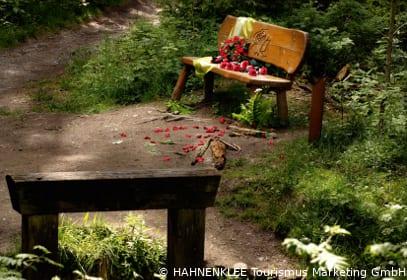 Liebesbankweg um den Bocksberg im Harz