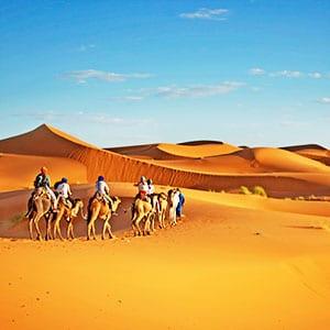 Rundreisen Oman Wüster Kamelsafari