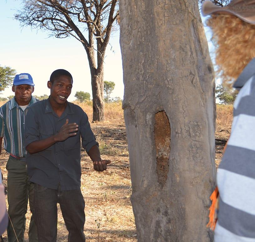 Nachhaltigkeit Menschenrechte und faire Arbeitsbedingungen