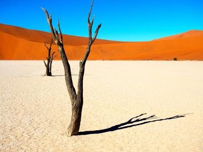 Gruppenreise Namibia - Namib